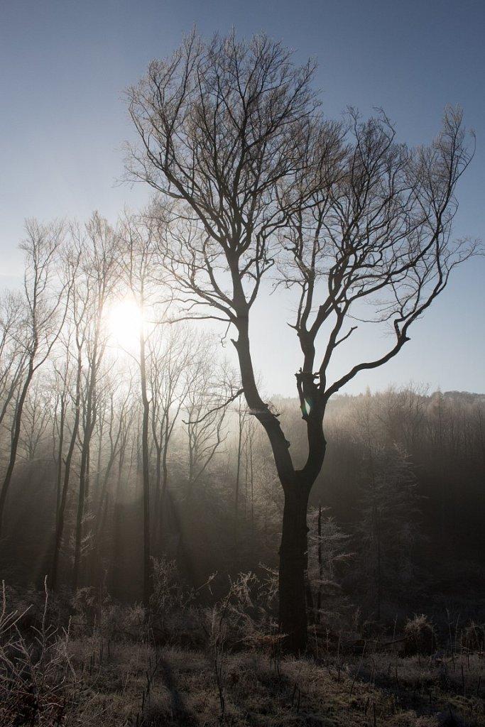 Wintertag-3-2.JPG